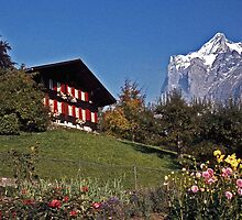 Chalet near Grindelwald, Switzerland by David J Dionne