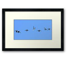 A Clown In Every Crowd Framed Print