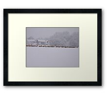 snowy flock Framed Print