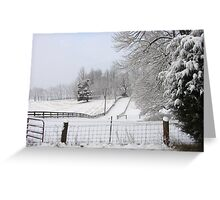 After a snow storm Greeting Card