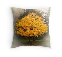 Seasons through the lens #7 Throw Pillow