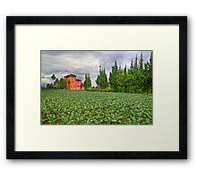 Vegetation Landscape Framed Print