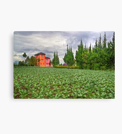 Vegetation Landscape Canvas Print