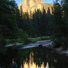 Half Dome, Yosemite Park by Anne McKinnell