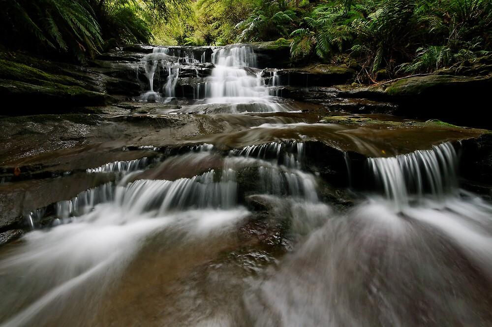 Flowy Leura Flow by Robert Mullner
