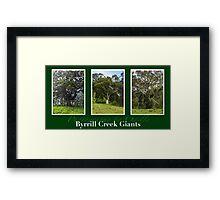 Byrrill Creek GIants Framed Print