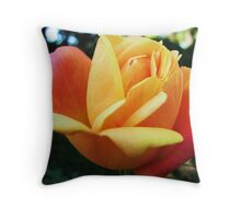 Roses in November Throw Pillow