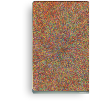 zooming Canvas Print