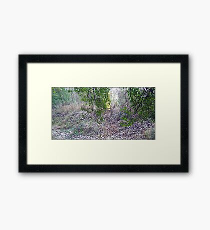 The once was upon a time Creek Framed Print