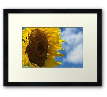 Sunny Faces and Blue Skies Framed Print