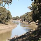 Darling River, Wilcania by Cheryl Parkes