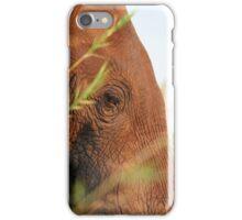 Eli - Up Close iPhone Case/Skin