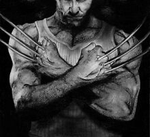 WOLVERINE by Maëlys G.
