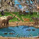 Animals kingdom by Moshe Cohen