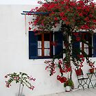 Lefkes, Paros, Greece by Leah Gay