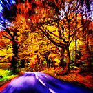 Fleeting Moment of Autumn by SylviaHardy
