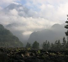 Morning Mist at Merapi by Tim Coleman