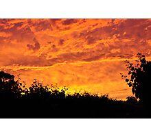 Vineyard Sunset Photographic Print