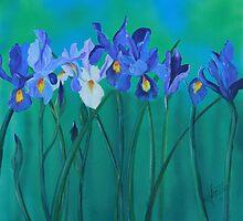 a clutch of dutch irises by Almeta
