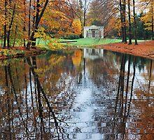 Taking your tea in autumnal splendour by jchanders