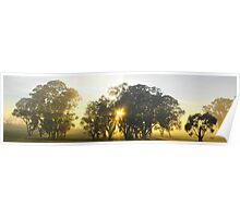 Mystic sunrise - Sargent's Water Hole Bordertown Poster