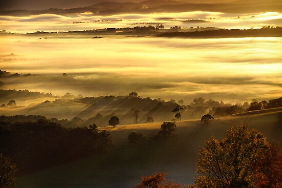 Mist in the valley by Robyn Lakeman