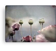 ~ Done and Dusty Pink ~ Metal Print