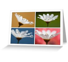 Daisy Dream Collage Greeting Card