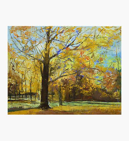 Shades of Autumn Photographic Print