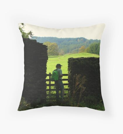 Small World Revisited Again Throw Pillow
