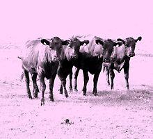 Four Ladies in Pink by Ritva Ikonen