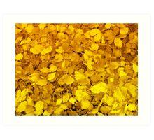 Golden carpet Art Print