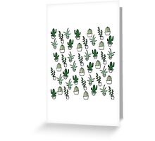Succulents - Colored Greeting Card
