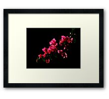 The World Is A Colorful Wonder ~ Part Nineteen Framed Print