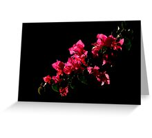 The World Is A Colorful Wonder ~ Part Nineteen Greeting Card