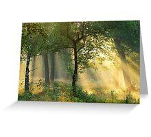 Enjoying the morning sunshine Greeting Card