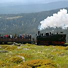 "Train climbing the ""Brocken"" in former East Germany. by David A. L. Davies"