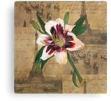 Lily of France Canvas Print