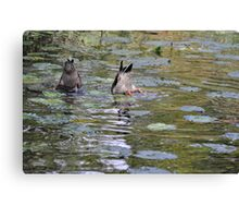 Bottoms Up! Canvas Print