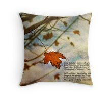 Winter Approaching - a collaboration Throw Pillow
