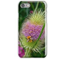 Teasel and Bee iPhone Case/Skin