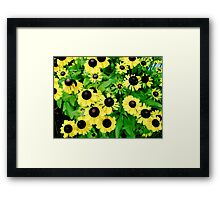 Yellow and Black Flowers  Framed Print