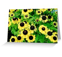 Yellow and Black Flowers  Greeting Card