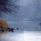 Humber River by withacanon