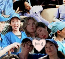 Meredith & Cristina (collage) Sticker