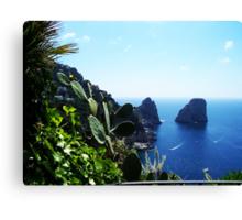 The Isle of Capri Canvas Print