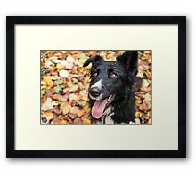 Autumn Eyes Framed Print