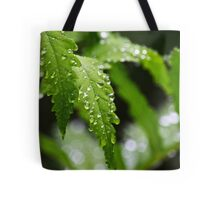 Fern Leaves Tote Bag