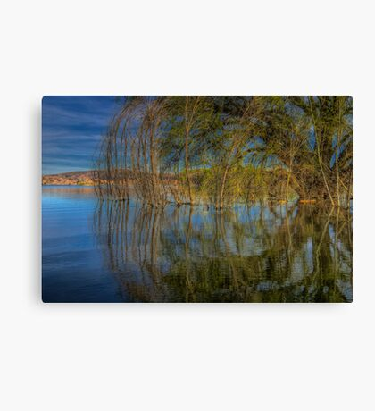 A Side Of Willow Please Canvas Print