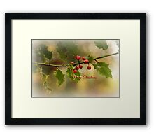 Christmas Holly` Framed Print